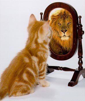 Оцени себя