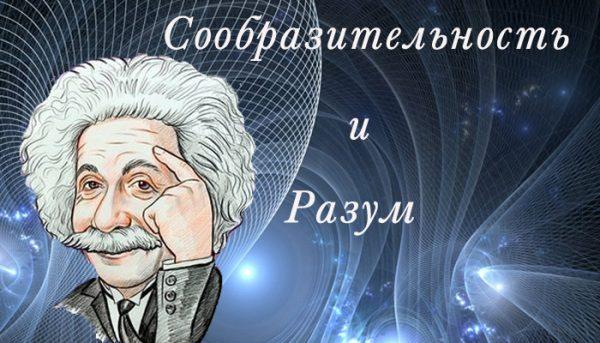 soobraziteljnostj_i_razum